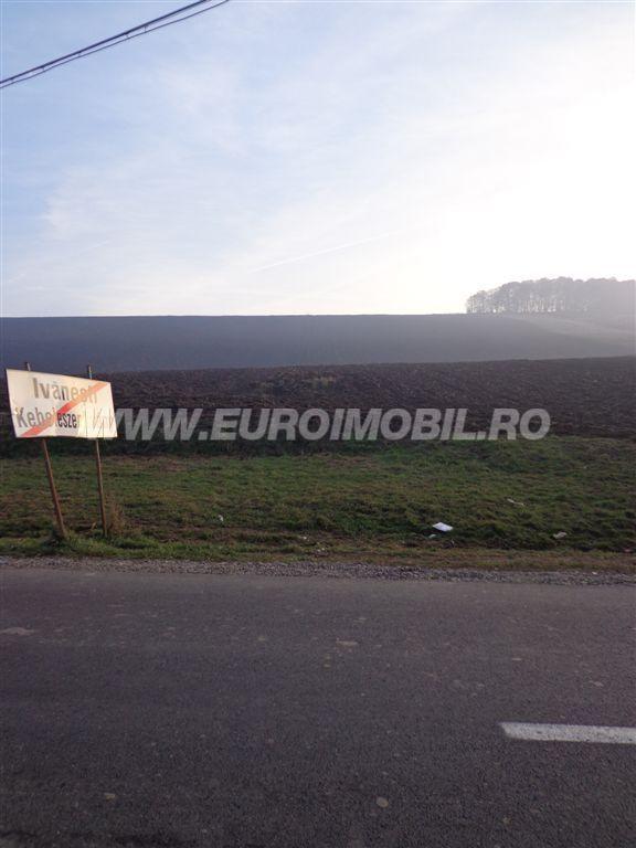 curs valutar euro vanzare